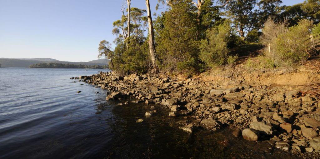 Mason Cove shoreline