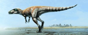 Illustration of Steroponychus. Credit Julius Csotonyi
