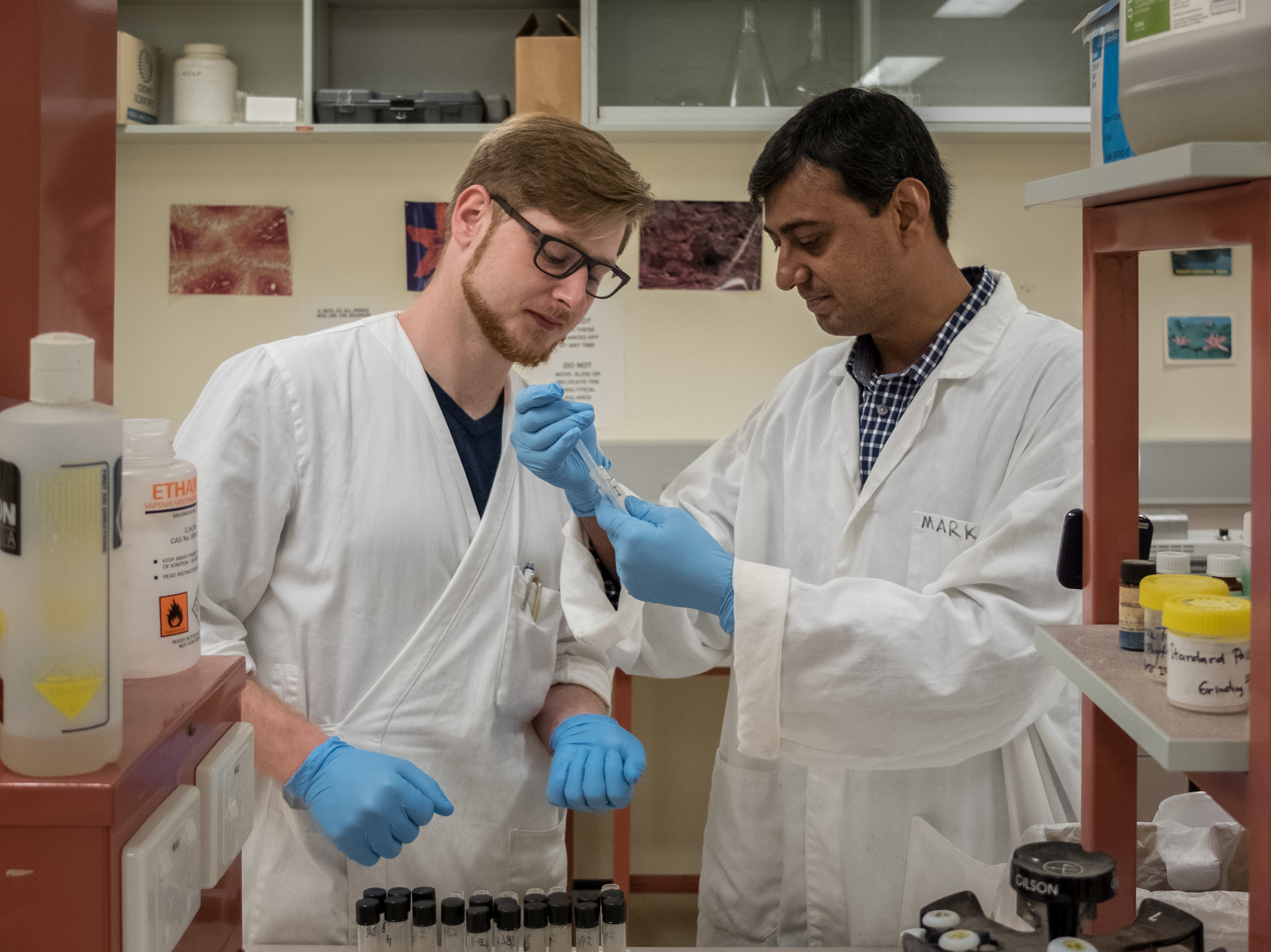 DAAD exchange students Florian Metzger, from Germany, and Zafar Iqbal, from Pakistan, collaborate on a shared poultry nutrition project at the University of New England.