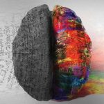 Graphic design of a brain, half in technicolour, half greyed out with scientific script over the greyed-out section.