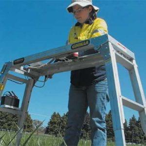 Woman setting up plant and soil sensors.