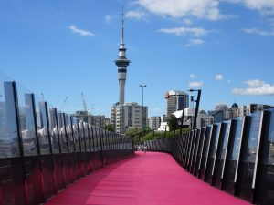 The Lightpath Pink Cycleway