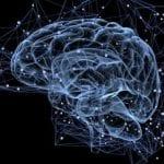 Scientists discover mechanism behind motor neurone disease | BBC News