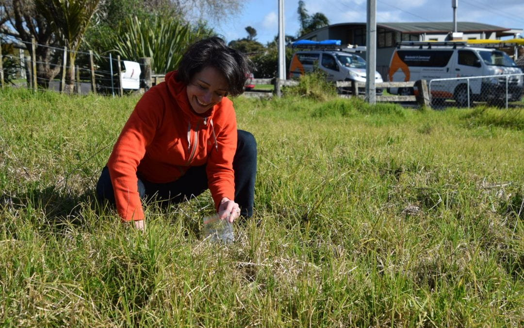 Listen to the RNZ interview on our soil testing programme.