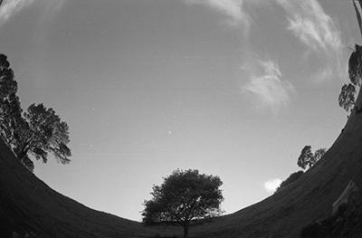Maungawhau crater