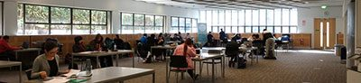 Students studying in the Engineering Information Commons
