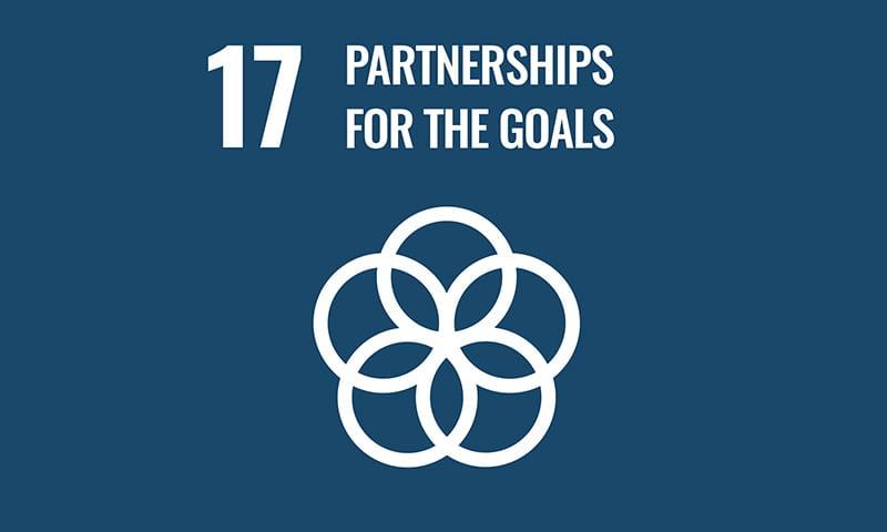 UNSDG Goal17