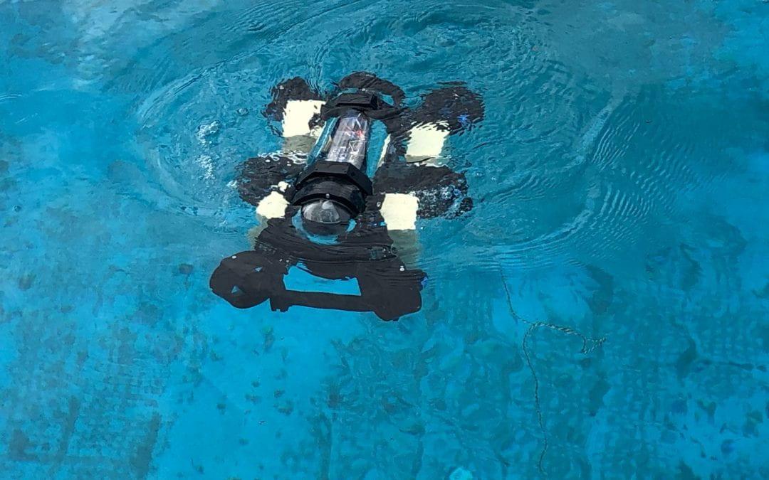 Meet a roboticist: Parag Tarwadi, PhD student