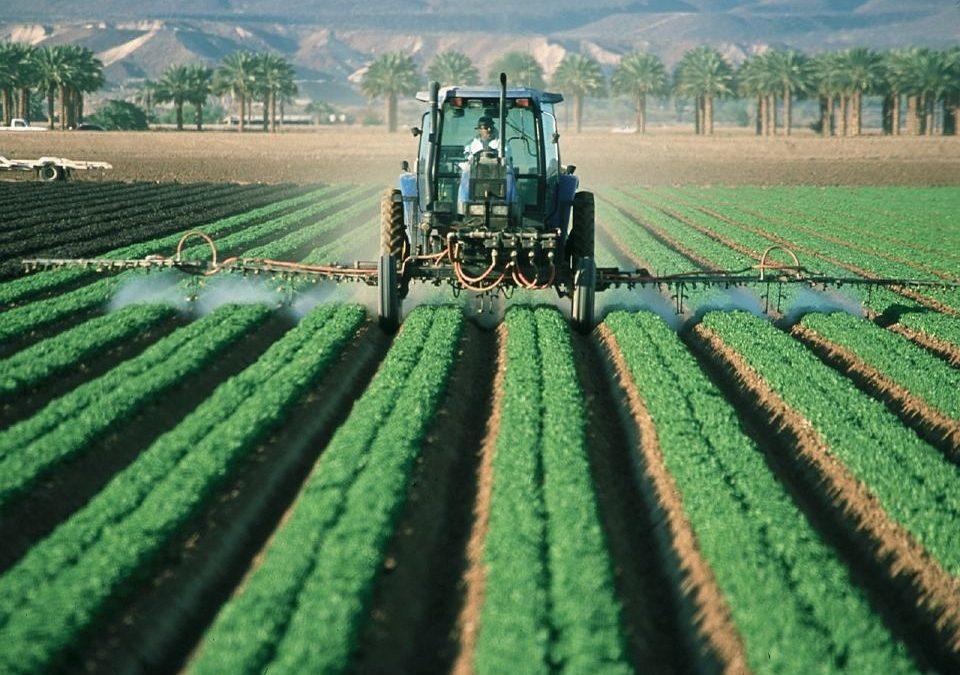 Is food security in flux?