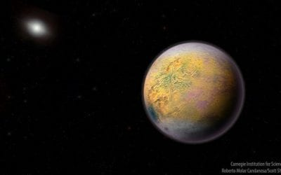 What does The Goblin tell us about the outer reaches of our solar system?