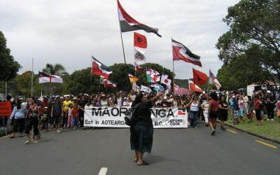 What is the Treaty of Waitangi settlement process?