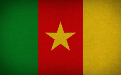 What are the causes of the civil war in Cameroon? 🔊