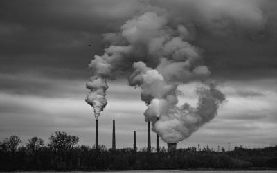 Climate emergency: What does the IPCC report say about the Earth's future?