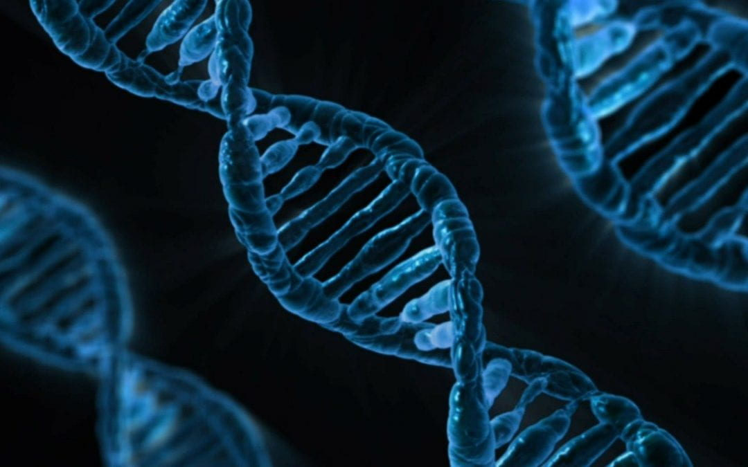 Human genome editing – are we ready?  ▶