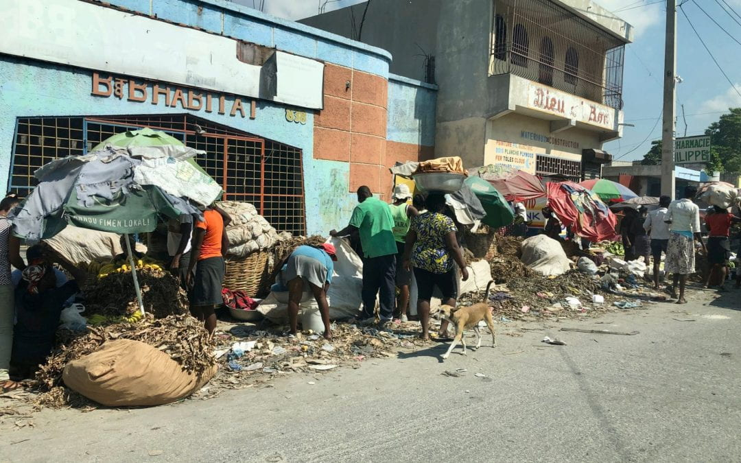 What are the causes of Haiti's ongoing poverty and political marginalisation? 🔊