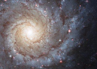 Shedding new light on dark matter