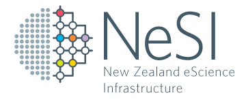 New Zealand eScience Infrastructure logo