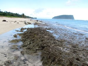 Beachrock and paleoreef on southeastern coast of 'Upolu, Samoa suggests higher sea level in the past