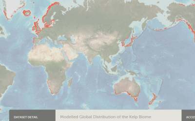 World map of the kelp biome