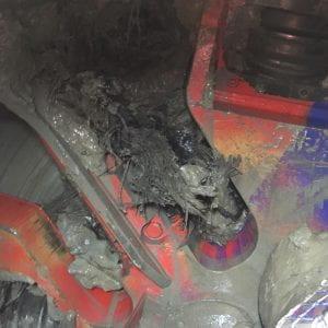 Buried treasure dating confirms Maungawhau / Mt Eden Eruption Age