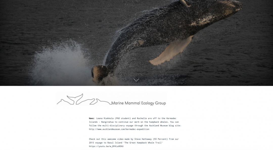 Marine Mammal Ecology Group