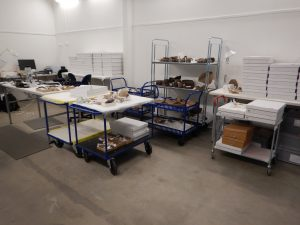 Figure 1: The Merimda collection in storage. All of the white boxes contain 40-80 artefacts which I will look at.