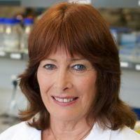 Professor Jill Cornish