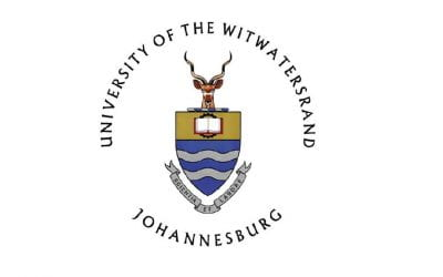 Virtual Visiting Professorship In South Africa