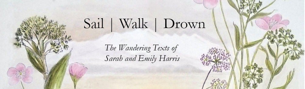 Sail Walk Drown The Wandering Texts of Sarah and Emily Harris banner: clouds and pink flowers composite of drawings by Emily C Harris