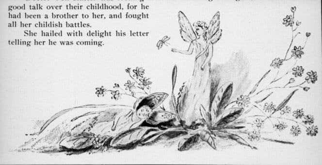 Shows two fairies, one asleep beneath a daisy plant.