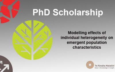 Modelling effects of individual heterogeneity on emergent population characteristics