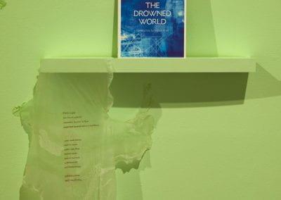 Raewyn Martin, Climate Change Heartbreak Poems, 2006 - 2013 (detail). Photograph by Sam Hartnett.