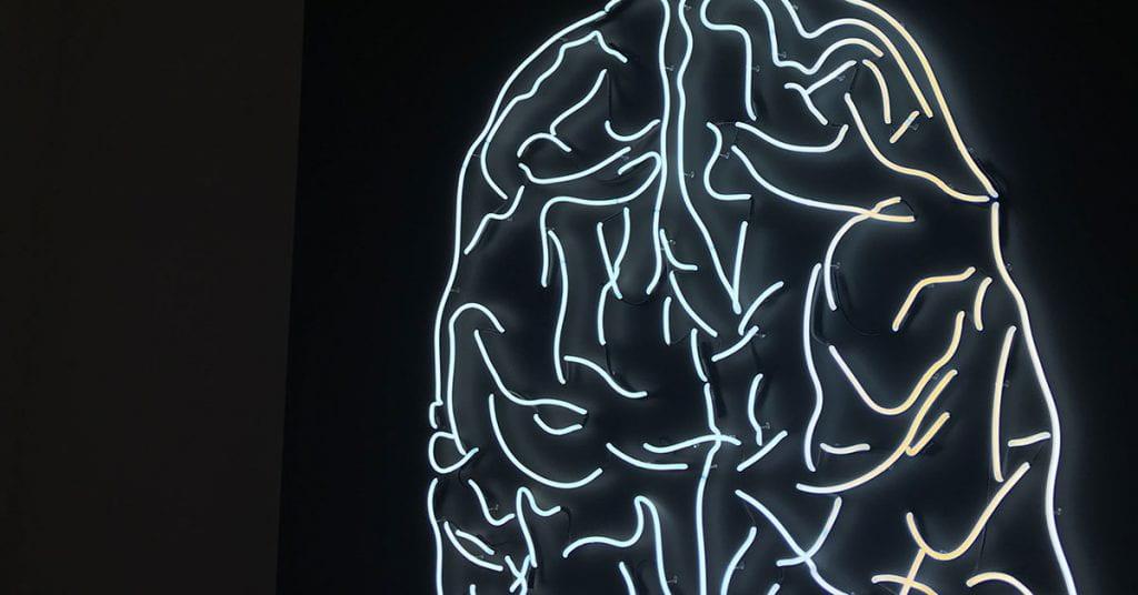 LED brain