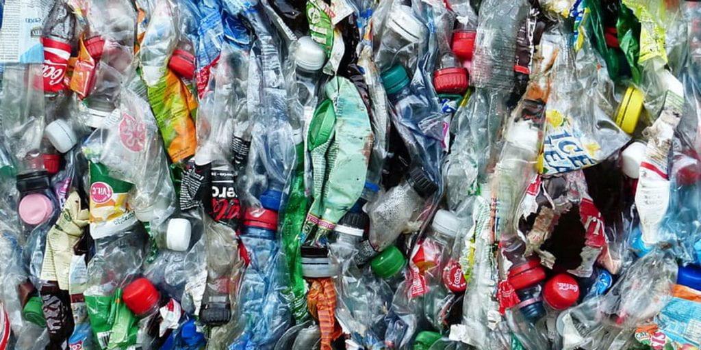 Squashed plastic bottles