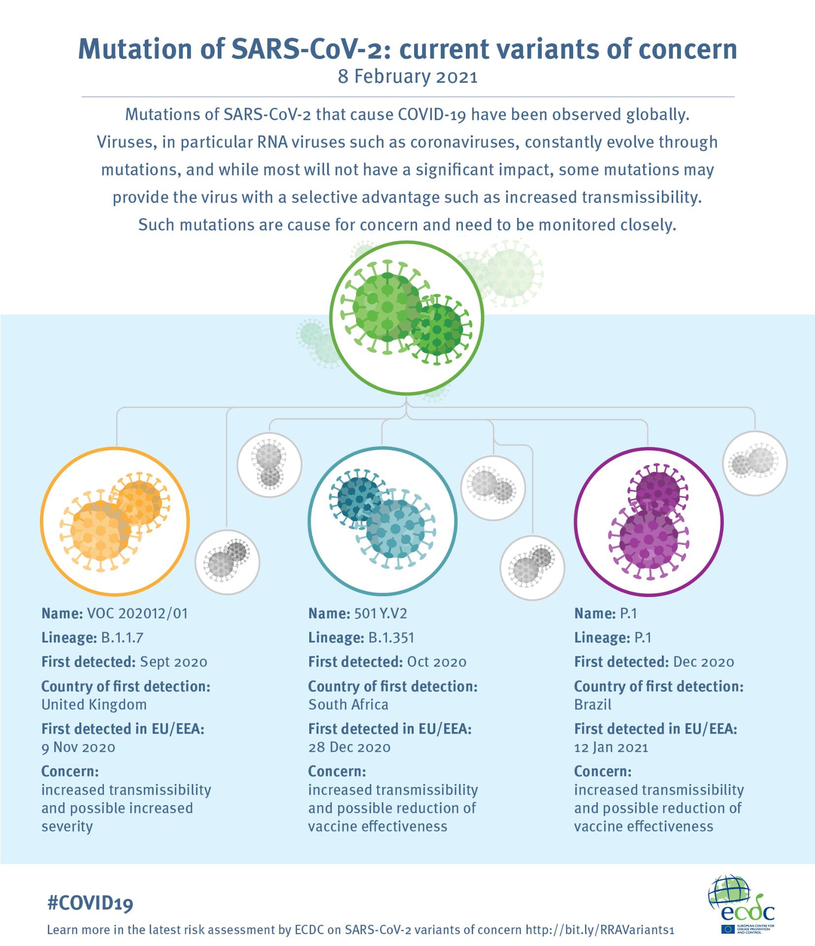 An infographic describing three SARS-CoV-2 variants of concern