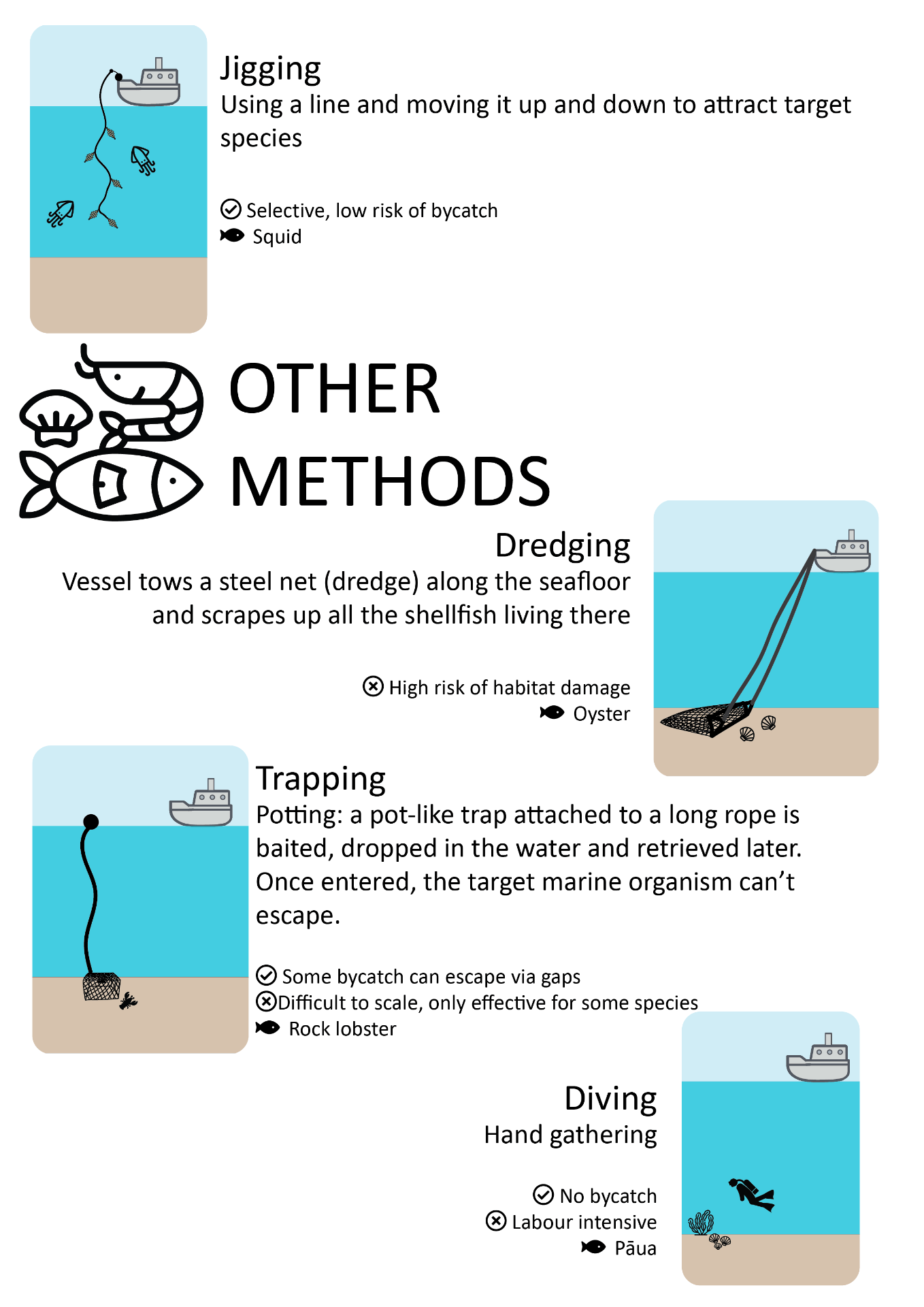 Jigging involves using a line and moving it up and down to attract target species. It is selective with a low risk of bycatch. Other methods include dredging, where a vessel tows a steel net (dredge_ along the seafloor and scrapes up all the shellfish living there. This has a high risk of habitat damage. Trapping or potting uses a pot-like trap attached to a long rope which is baited, dropped in the water and retrieved later. Once entered, the target marine organism can't escape. Some bycatch can escape via gaps. Trapping is difficult to scale and is only effective for some species. Diving to hand-gather species such as pāua does not have any bycatch but is labour intensive.