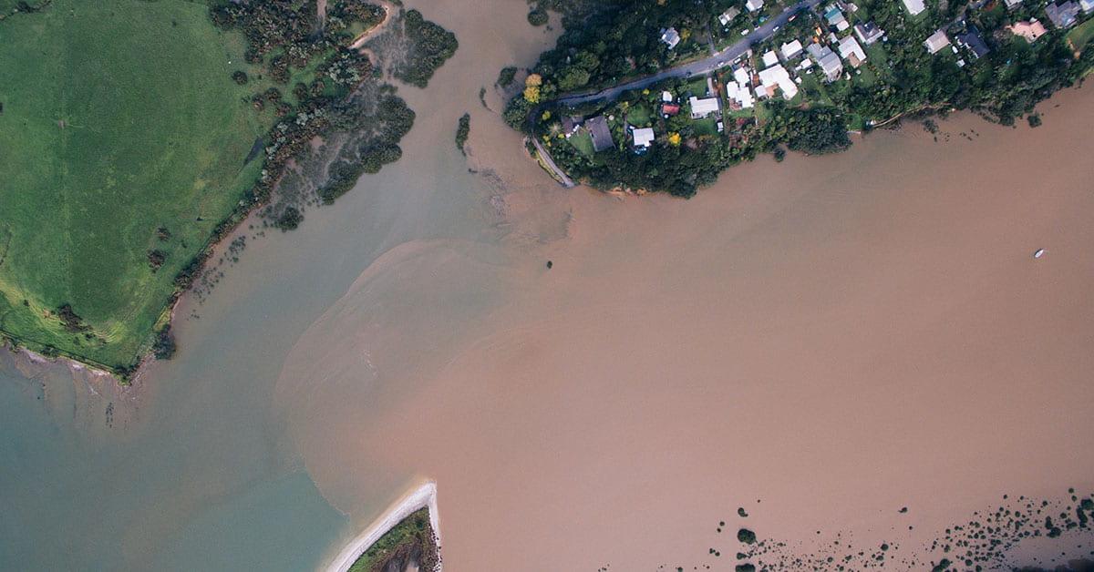 Sediment near Okura by Geoff Reid NZ