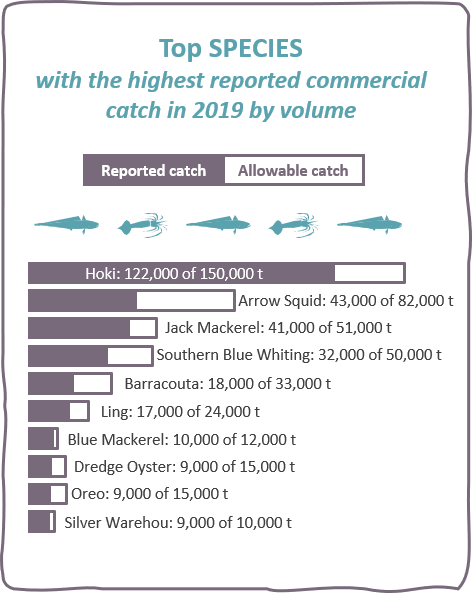 Top species with the highest reported commercial catch in 2019 by volume: hoki, arrow squid, jack mackerel, southern blue whiting, barracouta, ling, blue mackerel, dredge oyster, oreo, silver warehou
