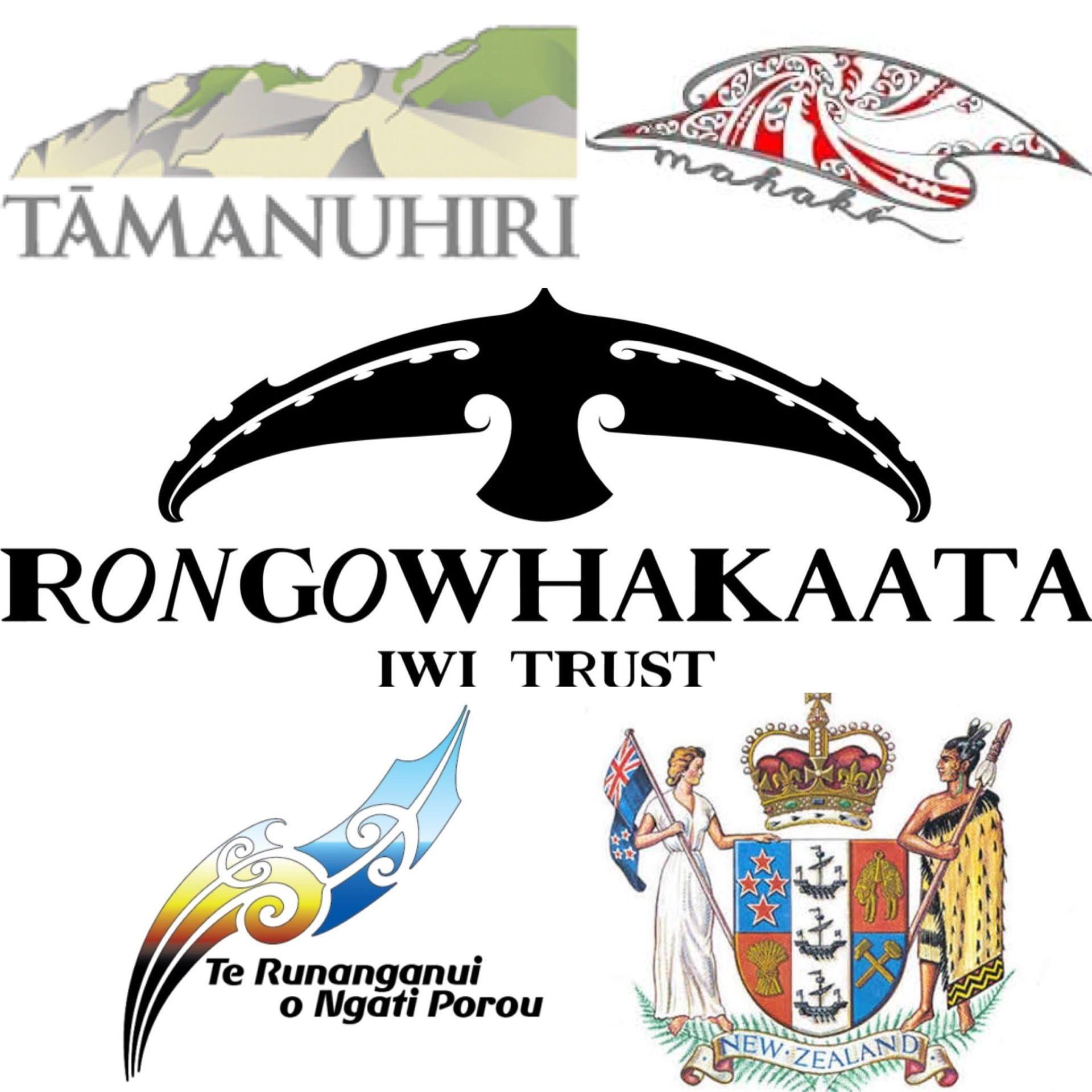 A collage of Tairāwhiti iwi logos: Tāmanuhiri, Mahaki, Rongawhakaata, Te Runanganui o Ngati Porou. Aso the NZ government logo