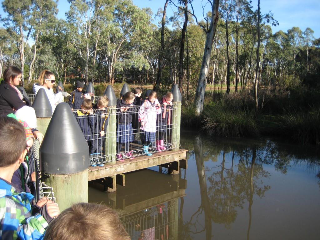 Urrbrae Wetlands Excursion