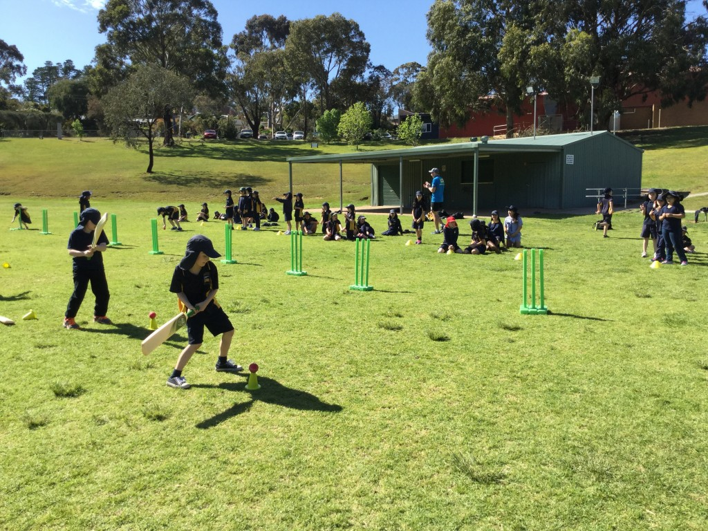 Cricket Clinic
