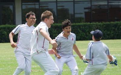 15B Cricket v Grammar