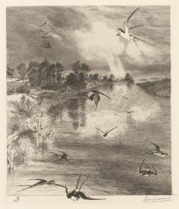 Felix Bracquemond, Les Hirondelles (The Swallows), 1882, etching.