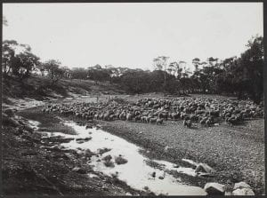 Pastoral scene, Southern District, 1943