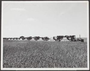 Harvesting scene on the property of Mr. E. Smart, Tootra, Western Australia, c.1933-1962