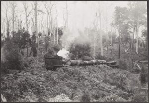 Log train en route to mill, Pemberton, July 11, 1938