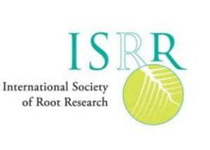 International Society of Root Research logo