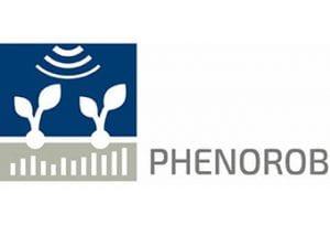 Phenorob logo