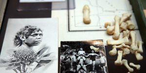 Brook Andrew 2013 - Anatomie de la memoire du corps au-dela de la Tasmanie