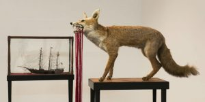 Megan Evans, Fox, found taxidermy fox, glass beads, cotton, steel star pickets, and Hero, found antique ship in case, glass beads, cotton, steel star pickets